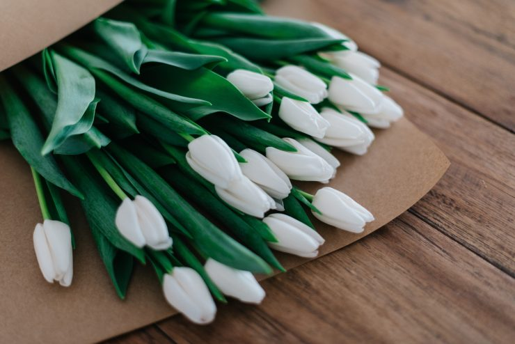 White Tulips, Photo by Roman Kraft on Unsplash
